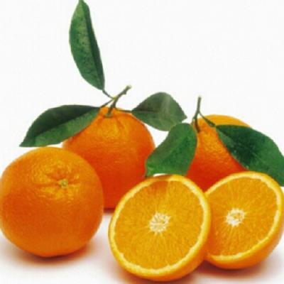 Navel orange from USA