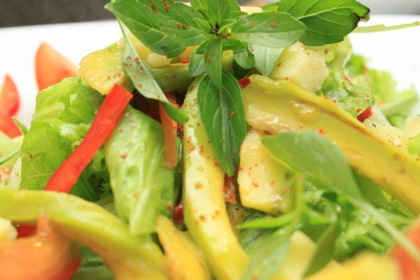 Avocado Haloumi Cheese Salad