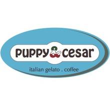 Puppy & Cesar