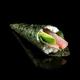 P1. Mayo tuna