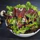 A1.Italian Salad