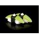 Avocado sushi (Vegetarian)
