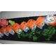 Philadenphia sushi roll
