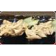 Tuna mayo wasabi gunkan