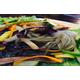 Stir fried vermicelli