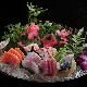 Sashimi Party For 4